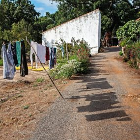 2 Hermon D_Algarve Farm Washday_MP Shadow