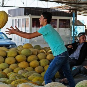 DSCF1158 melon catching MPG