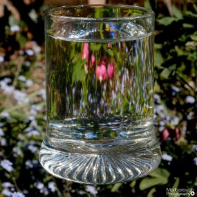 02-Dfe-glass